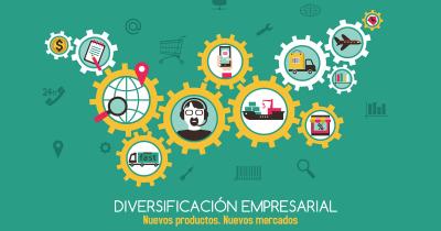 enyd diversificación empresarial