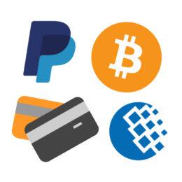 Establezca los métodos de pago