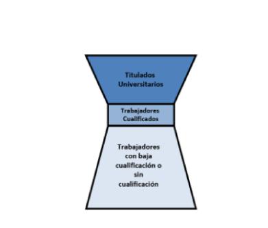 Diversidad de las Organizaciones