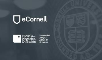 ENyD colabora con Cornell University